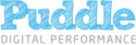 Puddle Digital Logo